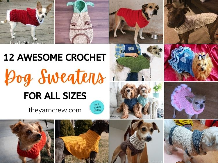 12 Awesome Crochet Dog Sweaters For All Sizes FB POSTER