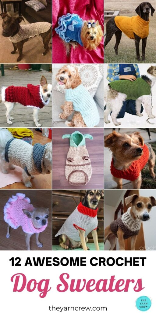 12 Awesome Crochet Dog Sweaters PIN 3