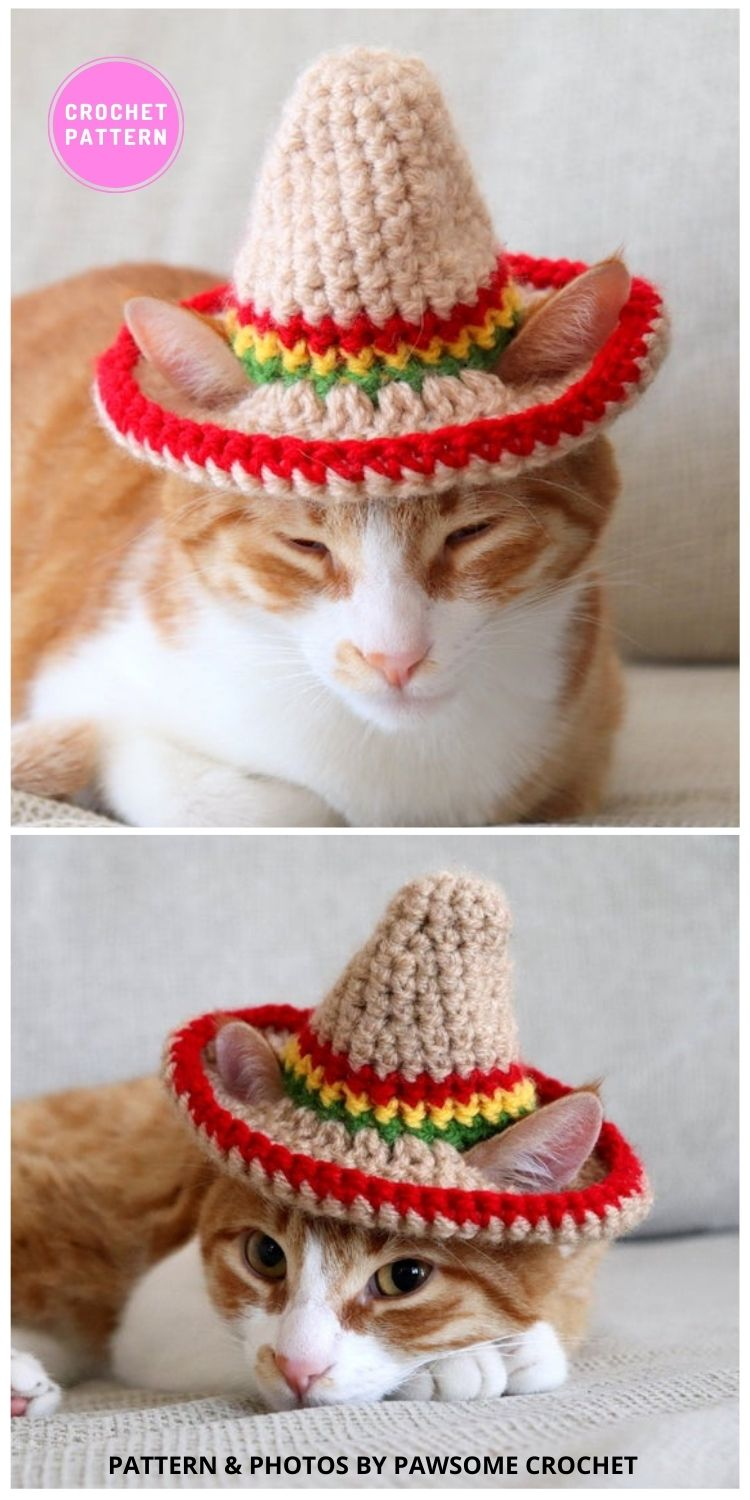 Cat Sombrero - 6 Crochet Hats For Cats Patterns For Your Furry Friend