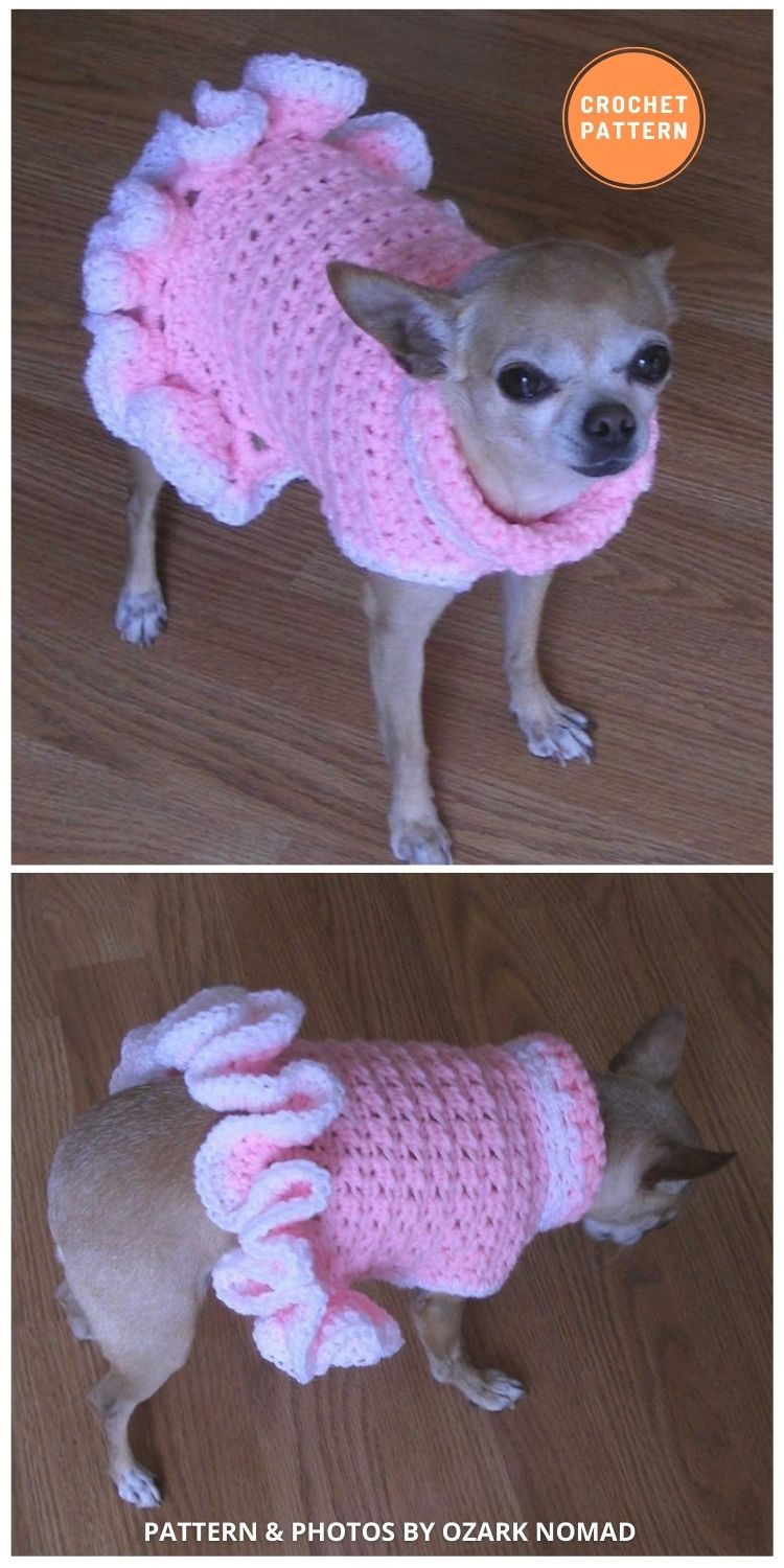 Cha-Cha Dog Sweater - 12 Awesome Crochet Dog Sweaters For All Sizes