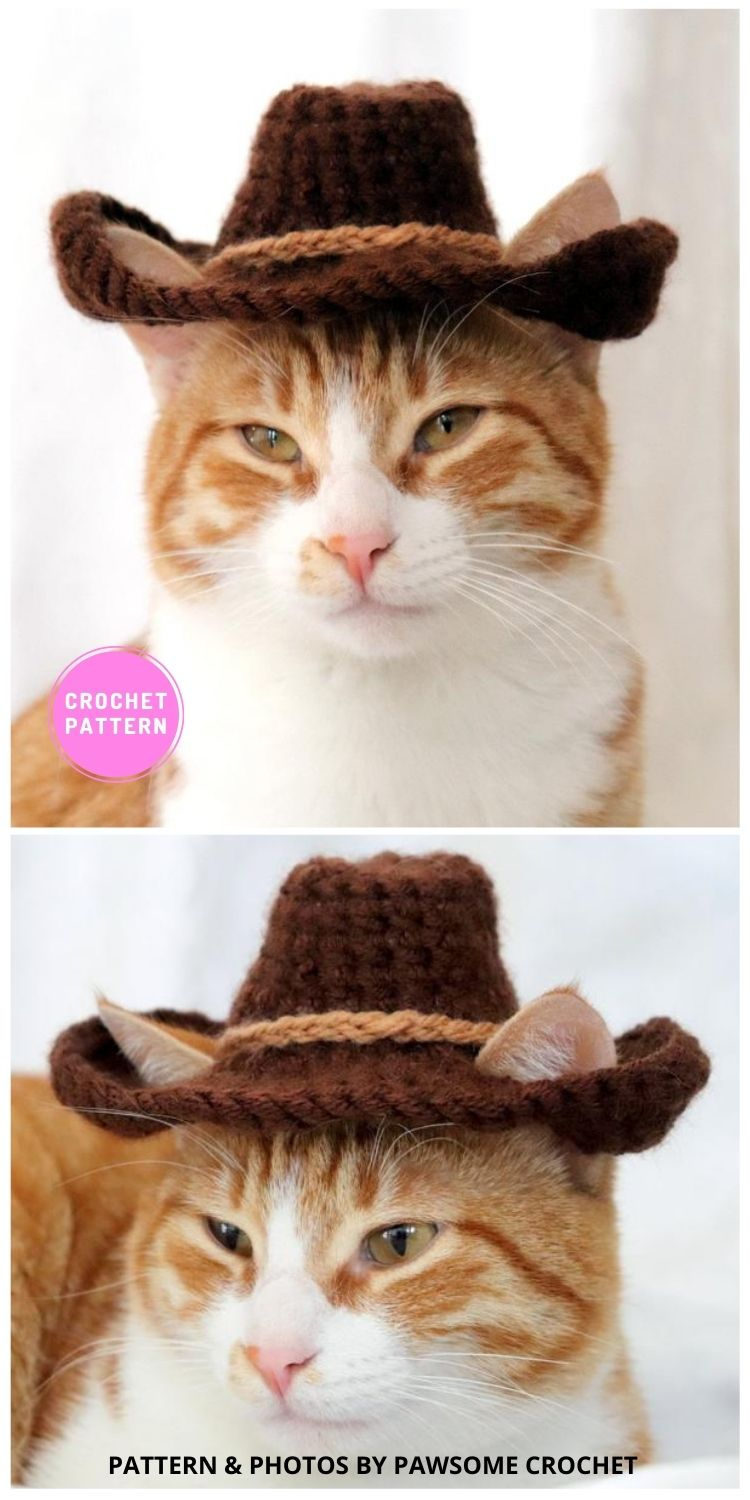Cowboy Hat - 6 Crochet Hats For Cats Patterns For Your Furry Friend