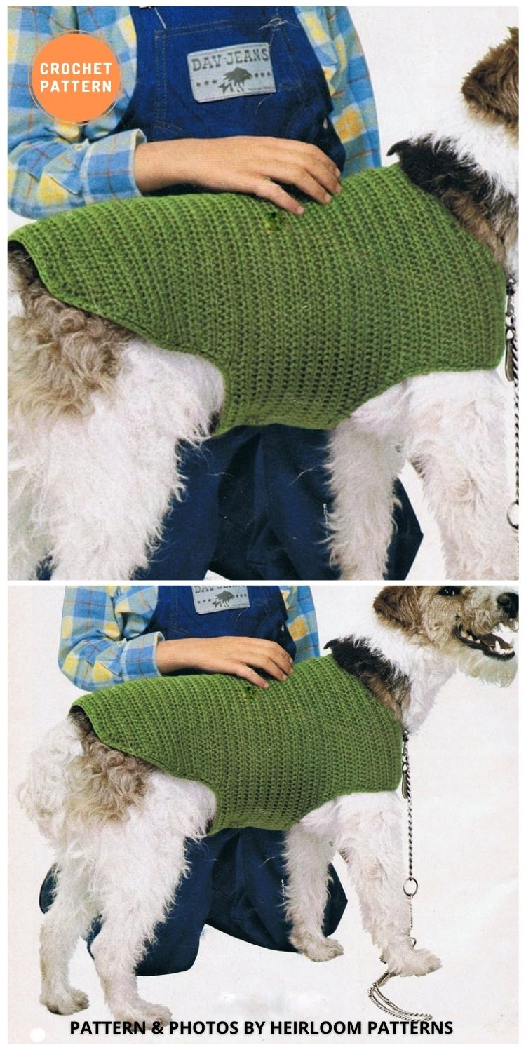Dog Coat - 12 Awesome Crochet Dog Sweaters For All Sizes