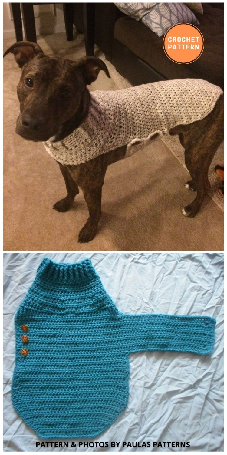 Dog Sweater - 12 Awesome Crochet Dog Sweaters For All Sizes (1)