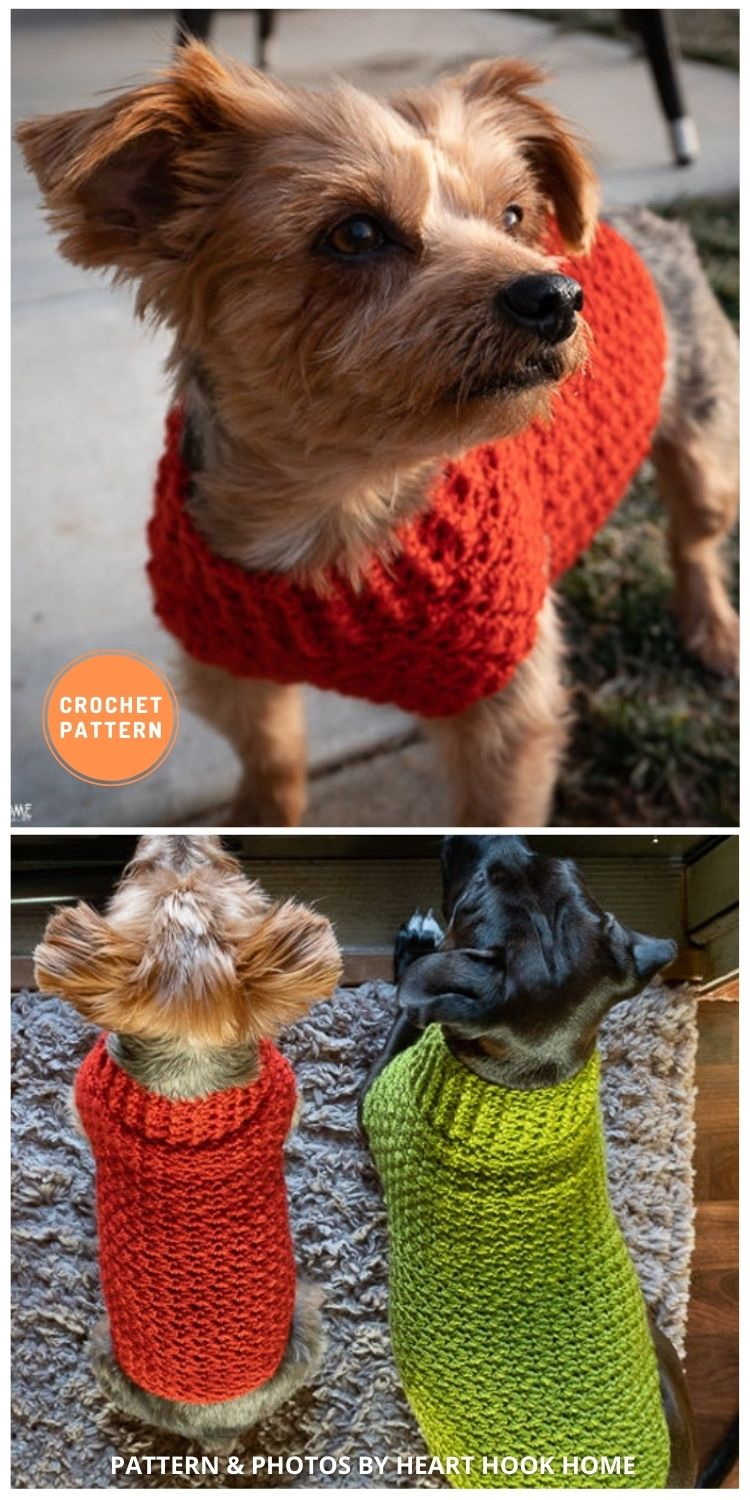 Dog Sweater - 12 Awesome Crochet Dog Sweaters For All Sizes