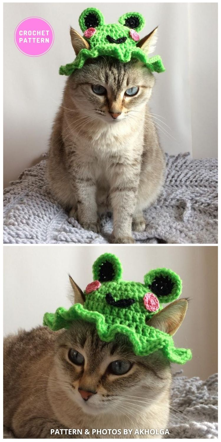 Frog Hat - 6 Crochet Hats For Cats Patterns For Your Furry Friend