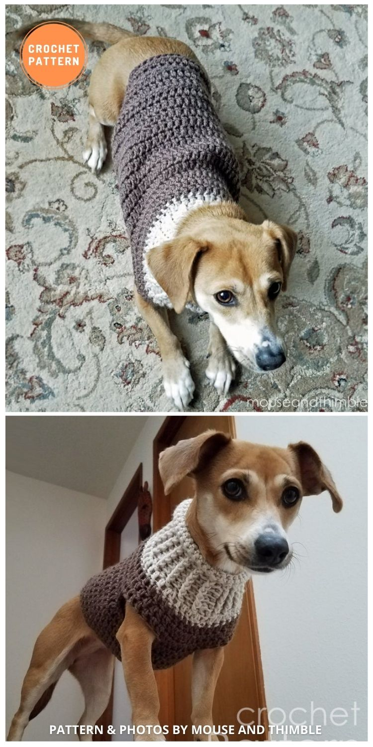Seamless Earhart Bomber Design - 12 Awesome Crochet Dog Sweaters For All Sizes