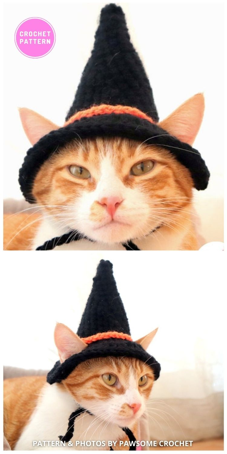 Witch Hat - 6 Crochet Hats For Cats Patterns For Your Furry Friend