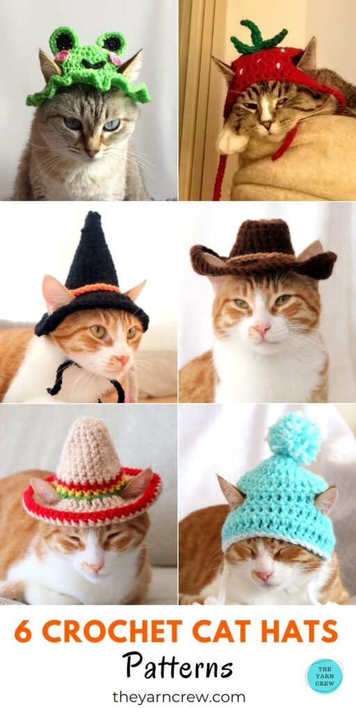 6 Crochet Cat Hats Crochet Patterns PIN 3