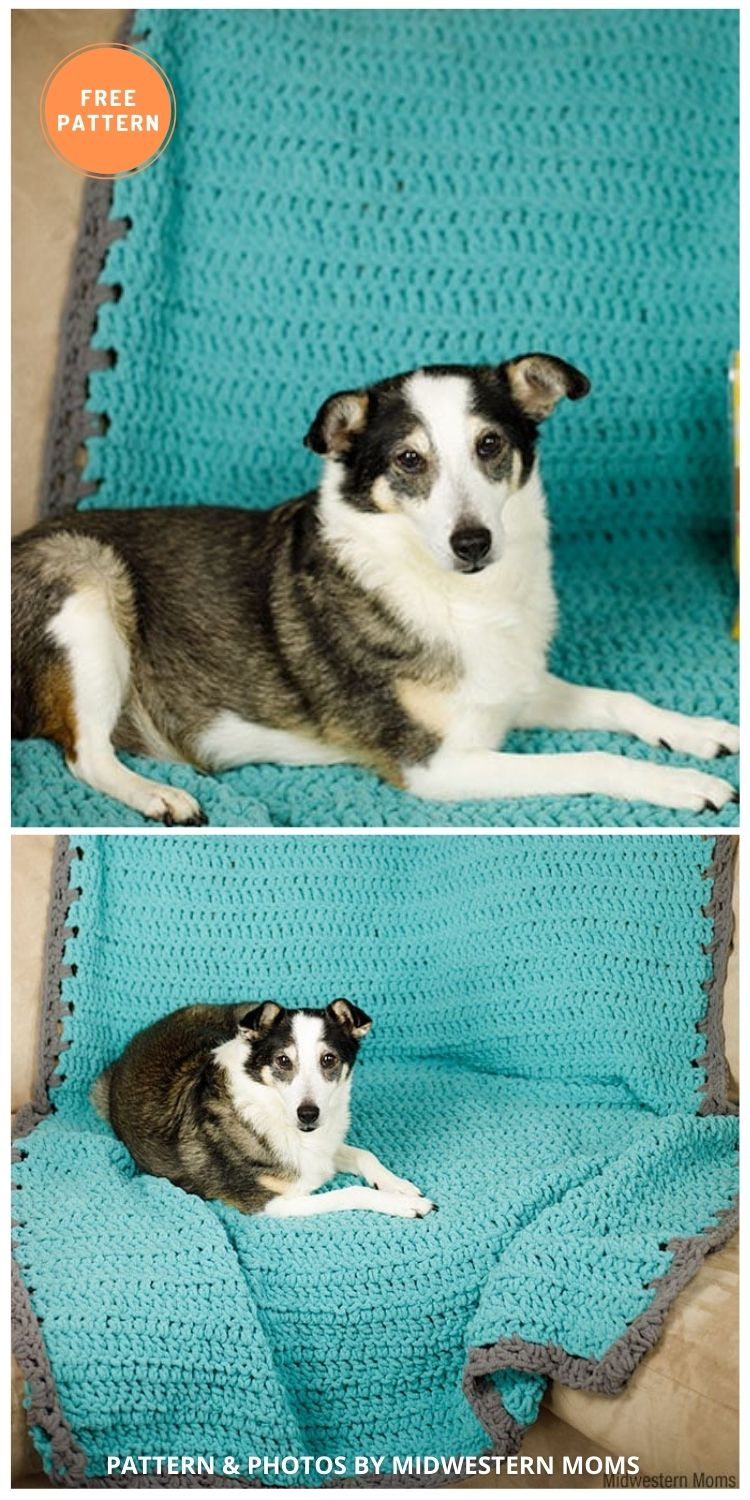 Dog Blanket Couch Cover - 5 Best Free Crochet Blankets For Dogs Patterns