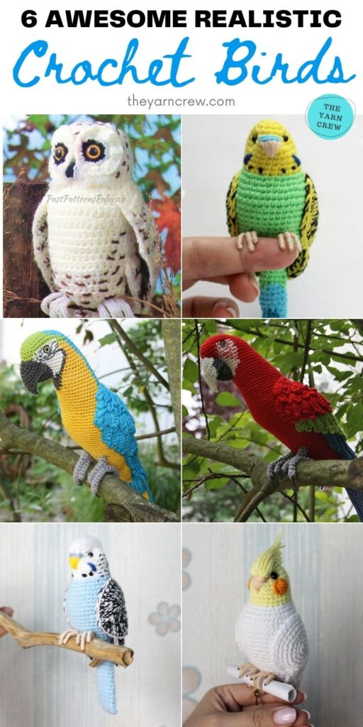6 Awesome Realistic Crochet Birds PIN 2