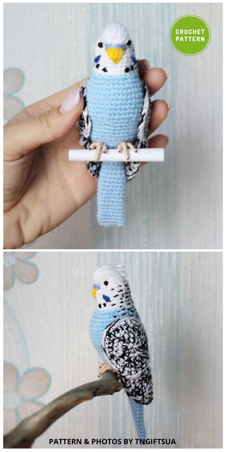 Crochet Budgie - 6 Awesome Realistic Crochet Bird Patterns To Make Right Now