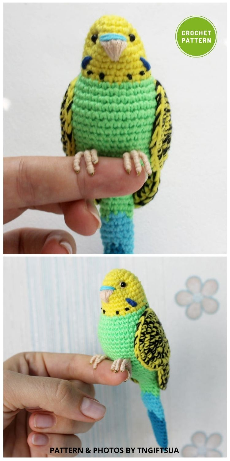 Crochet Green Budgie - 6 Awesome Realistic Crochet Bird Patterns To Make Right Now